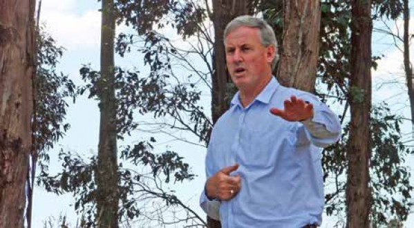 Senator Richard Colbeck returns to forest position a lion refreshed