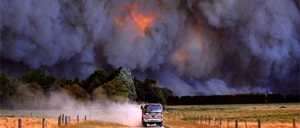 Taking the fuel out of bushfire risk