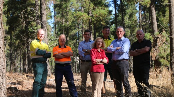 Funding boost for forest hub
